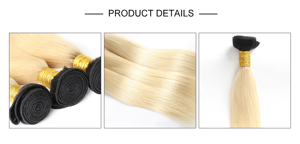 #1B/613 Ombre Blonde Straight Hair